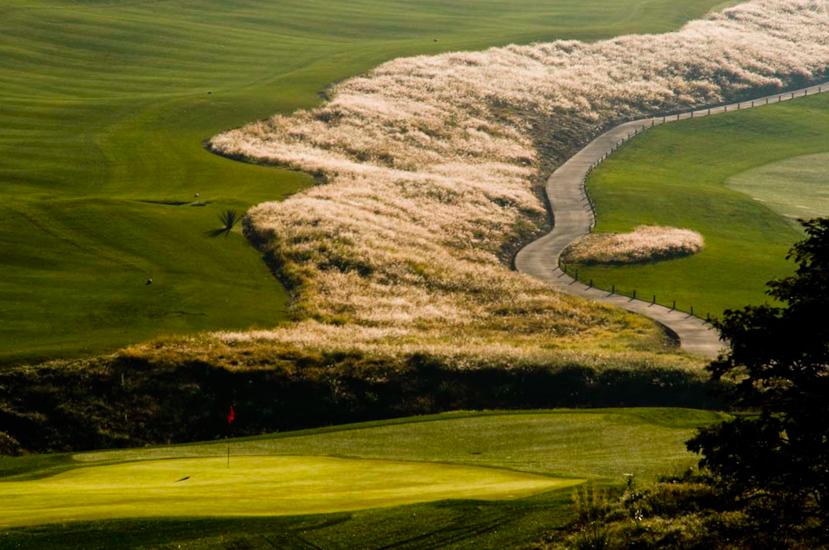 el-rio-golf-course-landscape-design1