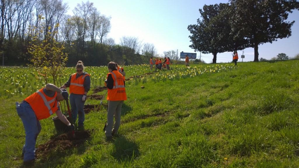 I-275 Tree Planting